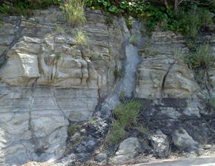 白浜の泥岩岩脈