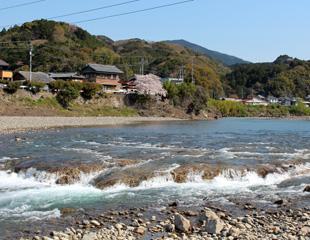 富田川の川替え跡