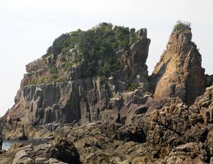 大島の火成岩
